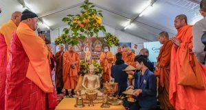 Bodhi tree Vesak Buddhist ceremony
